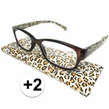 Voordelige tijgerprint leesbril +2