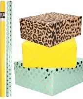 6x rollen kraft inpakpapier folie pakket tijgerprint geel mintgroen zilver stippen 200 x 70 cm