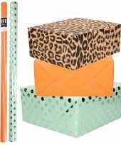 6x rollen kraft inpakpapier folie pakket tijgerprint oranje mintgroen zilver stippen 200 x 70 cm