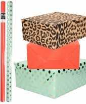 6x rollen kraft inpakpapier folie pakket tijgerprint rood mintgroen zilver stippen 200 x 70 cm